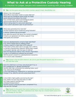 What to Ask at a Protective Custody Hearing: A Checklist