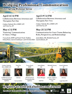 Spring Webinar Series 2021: Bridging Professional Communication Flyer